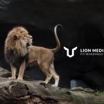 WordPressの最強無料テーマ「LION MEDIA 2.0」をインストール | このウェブサイトを構築した手順をご紹介 その6