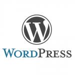 ≪超重要≫WordPressのサイトを独自ドメインでアクセスできるようにする | このウェブサイトを構築した手順をご紹介 その7